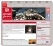 Ženski forum Socialnih Demokratov - izdelava spletne strani